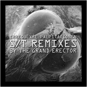 GRAND ERECTOR, THE - Irregulare Palpitationen (The S/T Remixes) (LP Pure Pop For Now People 2011)