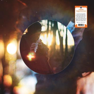 LAIKE – Fången i Det Senaste (Trapped In The Latest) (LP,180g,DieCut Discos Monterey 2014) 1