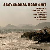 PROVISIONAL ROCK UNIT - Provisional Rock Unit (10i Discos Baltimore 2008)