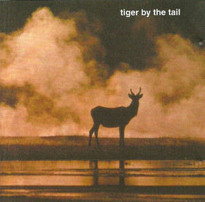 TIGER BY THE TAIL - Tiger By The Tail (CD Bang!,Funhouse 2006)