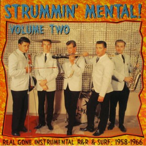VVAA - Strummin' Mental! Vol 2 (LP Link Wraycords )