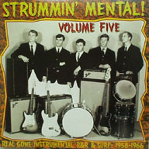 VVAA - Strummin' Mental! Vol 5 (LP Link Wraycords )