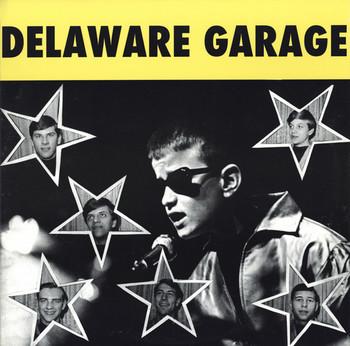 VVAA - Delaware Garage (LP Distortions 2010)